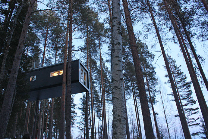 The Treehotel in Sweden is an unusual honeymoon destination
