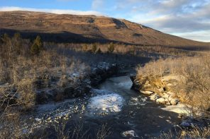 Walking tour in Abisko, Swedish Lapland