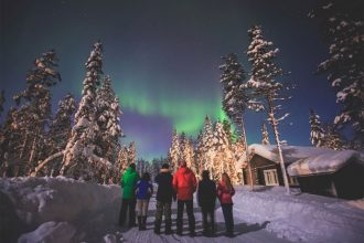 Northern lights wildlife tour in Swedish Lapland