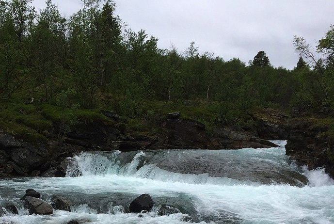 Abisko Wilderness