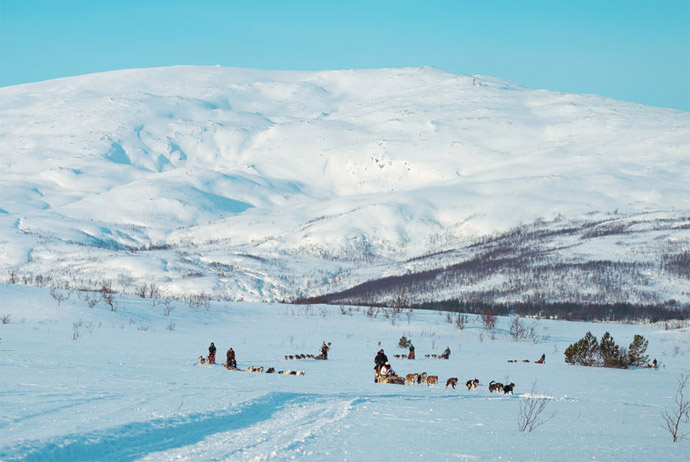 Dog sledding is a classic Norway tour