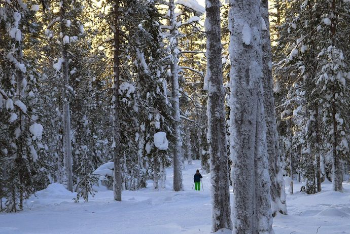 Finnish Lapland is a great place to visit in winter